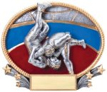 Wrestling 3D Oval Trophy (Male) All Trophy Awards
