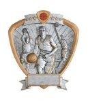 Signature Series Basketball Shield Awards Basketball