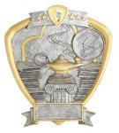 Signature Series Knowledge Shield Award Education Trophy Awards