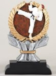 Karate Impact Trophy Karate Trophy Awards