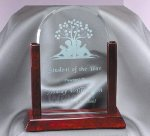 Arch Rosewood & Jade Glass Award Rosewood Glass Awards