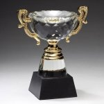 Crystal Cup with Gold Accents Trophies - Cup Awards
